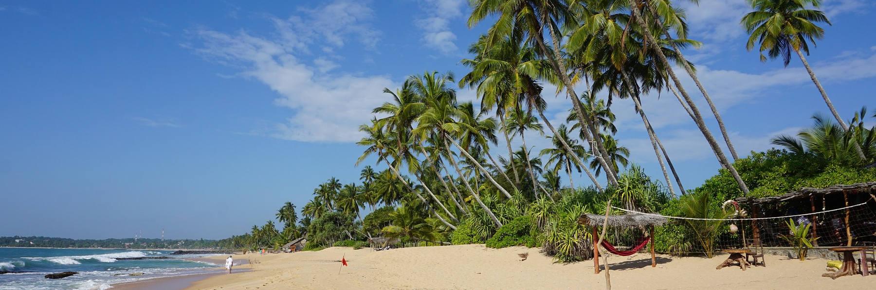 ▷▷▷ Sri Lanka Reisen günstig buchen!